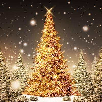 Bonvino Karácsony